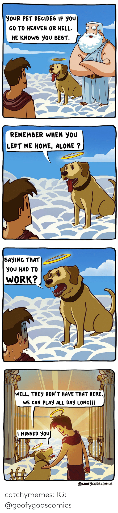 Heaven: YOUR PET DECIDES IF YOU  GO TO HEAVEN OR HELL.  HE KNOWS YOU BEST.   REMEMBER WHEN YOU  LEFT ME HOME, ALONE ?   SAYING THAT  YOU HAD TO  WORK?   WELL, THEY DON'T HAVE THAT HERE,  WE CAN PLAY ALL DAY LONG!!!  I MISSED YOU  @GOOFYGODSCOMICS catchymemes:  IG: @goofygodscomics