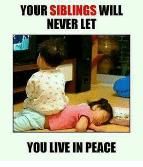 Memes, Live, and Never: YOUR SIBLINGS WILL  NEVER LET  YOU LIVE IN PEACE