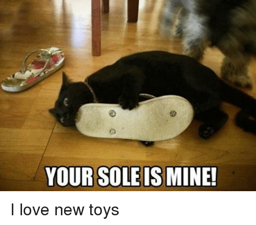 YOUR SOLE IS MINE! I Love New Toys