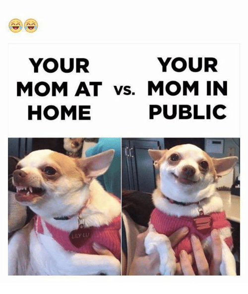 lily lu: YOUR  YOUR  MOM AT vs. MOM IN  PUBLIC  HOME  LILY LU