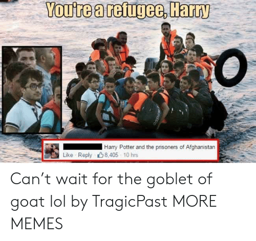 Afghanistan: You're a refugee, Harry  Harry Potter and the prisoners of Afghanistan  Like Reply 8,405 10 hrs Can't wait for the goblet of goat lol by TragicPast MORE MEMES