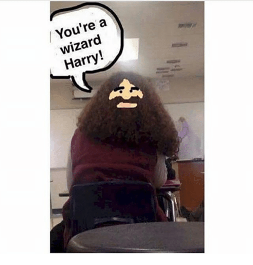 Memes, 🤖, and Wizard: / You're a  wizard  Harry!