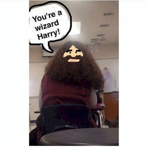 Wizard Harry: / You're a  wizard  Harry!