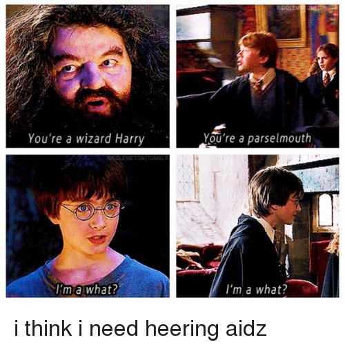 you re a wizard harry im a what wizard meme on