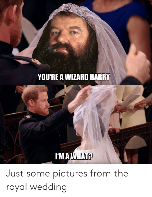 Wizard Harry: YOU'RE A WIZARD HARRY  I'M AWHAT? Just some pictures from the royal wedding