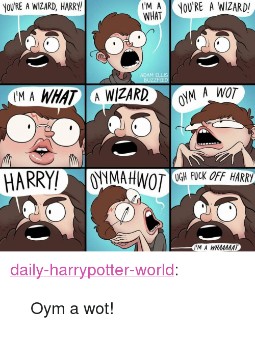 """Wizard Harry: YOURE A WIZARD, HARRY  ing  WHAT  OU'RE A WIZARD!  ADAM ELLIS  BUZZFEED  AM A WHAT A WIZARD  M A WOT  때FUCK OFF HARRY  IM A WHAAAT <p><a href=""""http://daily-harrypotter-world.tumblr.com/post/151001781639/oym-a-wot"""" class=""""tumblr_blog"""">daily-harrypotter-world</a>:</p>  <blockquote><p>Oym a wot!</p></blockquote>"""