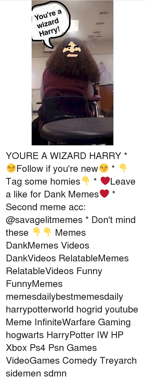 youtubed: / You're a  wizard  Harry! YOURE A WIZARD HARRY * 😏Follow if you're new😏 * 👇Tag some homies👇 * ❤Leave a like for Dank Memes❤ * Second meme acc: @savagelitmemes * Don't mind these 👇👇 Memes DankMemes Videos DankVideos RelatableMemes RelatableVideos Funny FunnyMemes memesdailybestmemesdaily harrypotterworld hogrid youtube Meme InfiniteWarfare Gaming hogwarts HarryPotter IW HP Xbox Ps4 Psn Games VideoGames Comedy Treyarch sidemen sdmn