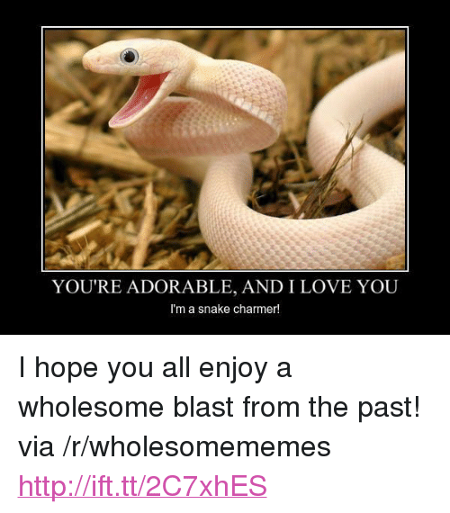 """Love, I Love You, and Http: YOU'RE ADORABLE, AND I LOVE YOU  I'm a snake charmer! <p>I hope you all enjoy a wholesome blast from the past! via /r/wholesomememes <a href=""""http://ift.tt/2C7xhES"""">http://ift.tt/2C7xhES</a></p>"""