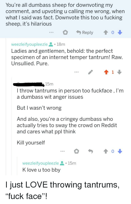 K Love: You're all dumbass sheep for downvoting my  comment, and upvoting u calling me wrong, when  what I said was fact. Downvote this too u fucking  sheep, it's hilarious  Reply  o  weezleifyoupleezle 18m  Ladies and gentlemen, behold: the perfect  specimen of an internet temper tantrum! Raw  Unsullied. Pure.  15m  l throw tantrums in person too fuckface,l'm  a dumbass wit anger issues  But I wasn't wrong  And also, you're a cringey dumbass who  actually tries to sway the crowd on Reddit  and cares what ppl think  Kill yourself  weezleifyoupleezle15m  K love u too bby