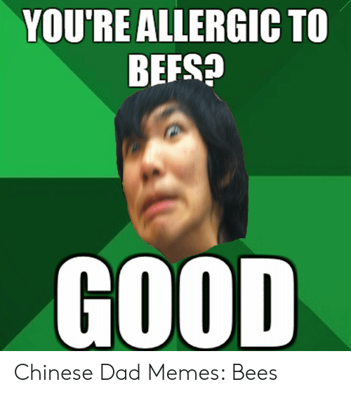 Asian Dad Meme: YOU'RE ALLERGIC TO  BEFS?  GOOD Chinese Dad Memes: Bees