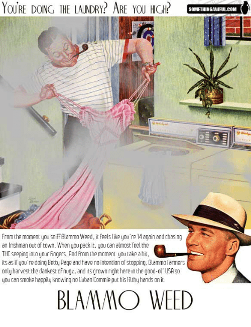 farmers only: YOURE DOING THE LAUNDRY? ARE YOU HIGH?  10  SOMFTHINGAWFULCOM  From the moment you sniff Blammo Weed, it feels like you're 14 again and chasing  an lrishman out of town. When you pack it, you can almost Feel the  THC seeping into your fingers. And from the moment you take a hit,  its as if you're doing Betty Page and have no intention of stopping. Blammo farmers  only harvest the dankest of nugz, and its grown right here in the good-ol' USA so  you can smoke happily knowing no Cuban Commie put his filthy hands on it.  BLAAMMO WEED