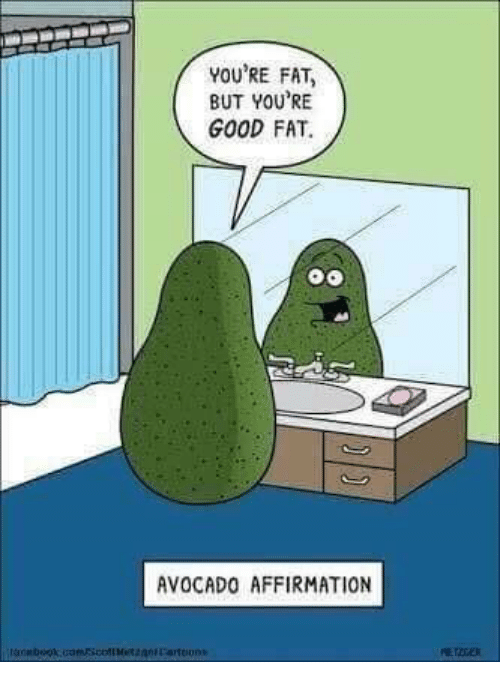 Avocado, Good, and Fat: YOU'RE FAT  BUT YOU'RE  GOOD FAT.  AVOCADO AFFIRMATION  oonbook.uamscolMezanLartoons