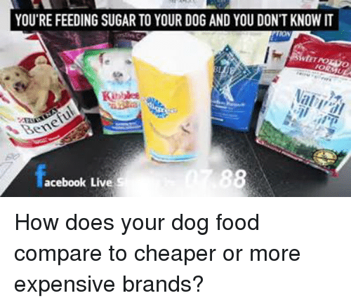 memes: YOU'RE FEEDING SUGAR TO YOUR DOG AND YOU DON'T KNOW IT  acebook Live  S How does your dog food compare to cheaper or more expensive brands?