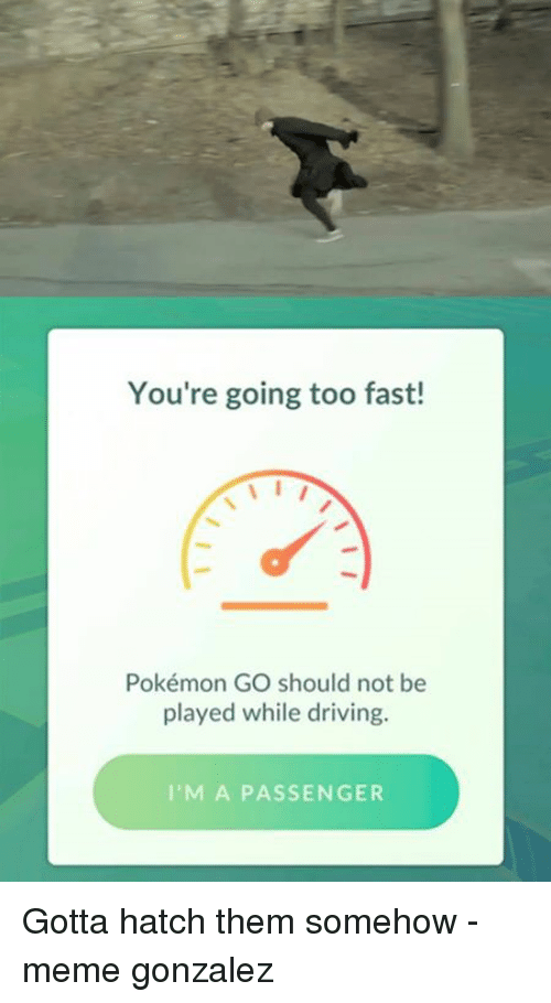 Dank, Driving, and Meme: You're going too fast!  Pokémon GO should not be  played while driving  I'M A PASSENGER Gotta hatch them somehow  -meme gonzalez