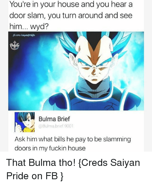 Bulma, Memes, and Wyd: You're in your house and you hear a  door slam, you turn around and see  him... wyd?  Bulma Brief  @Bulma brief 9001  Ask him what bills he pay to be slamming  doors in my fuckin house That Bulma tho! {Creds Saiyan Pride on FB }