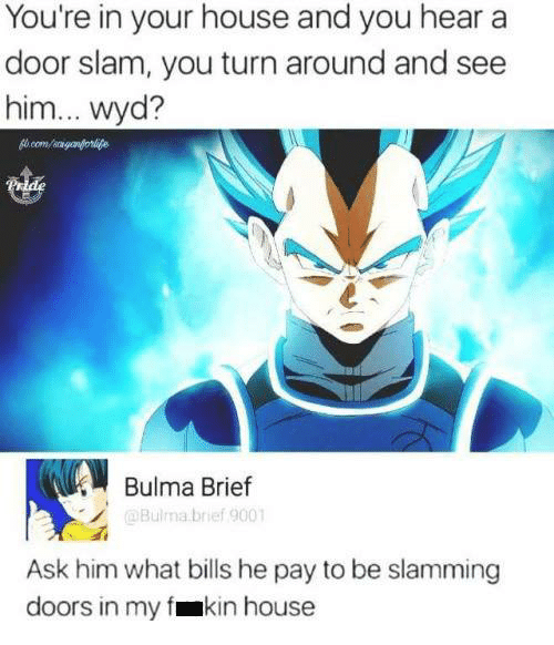 Bulma: You're in your house and you hear a  door slam, you turn around and see  him... wyd?  Bulma Brief  @Bulma brief 9001  Ask him what bills he pay to be slamming  doors in my fmkin house