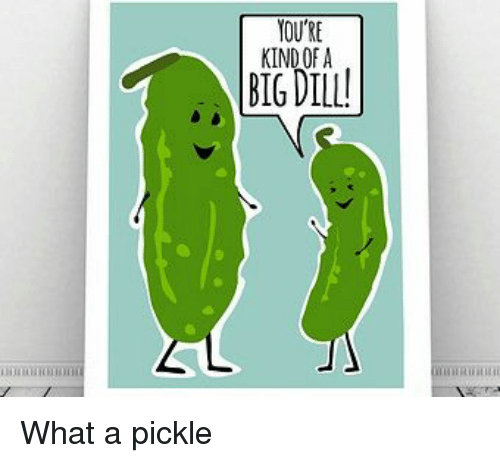 youre kind of a big dill what a pickle 13189941 🔥 25 best memes about big dill big dill memes