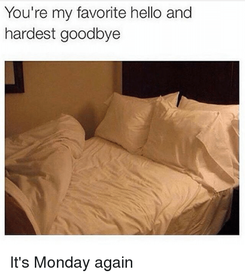 Hello, Memes, and Monday: You're my favorite hello and  hardest goodbye It's Monday again