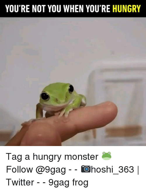 Youre Not You When Youre Hungry: YOU'RE NOT YOU WHEN YOU'RE HUNGRY Tag a hungry monster 🐸 Follow @9gag - - 📷hoshi_363 | Twitter - - 9gag frog
