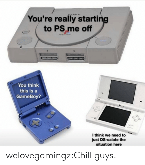 Sony: You're really starting  to PS me off  SONY  Phay ar  You think  this is a  GameBoy?  I think we need to  just DS-calate the  situation here welovegamingz:Chill guys.