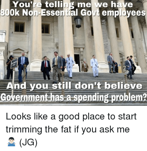 Memes, Good, and Fat: You're  telling me we have  30  Ok Non Essential Govt employees  A  nd you still don't believe  Government has a spending problem?  - Looks like a good place to start trimming the fat if you ask me 🤷🏻‍♂️ (JG)