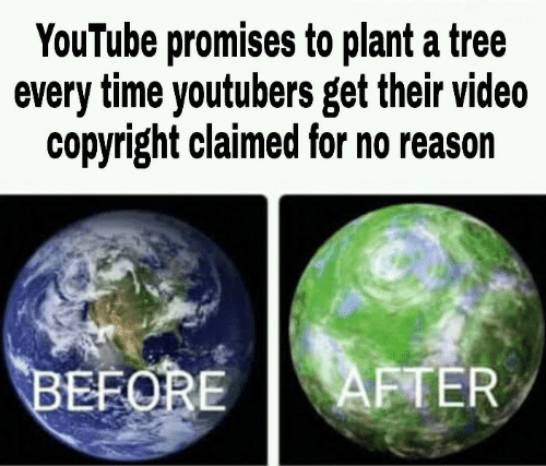 youtubers: YouTube promises to plant a tree  every time youtubers get their video  copyright claimed for no reason  AFTER  BEFORE