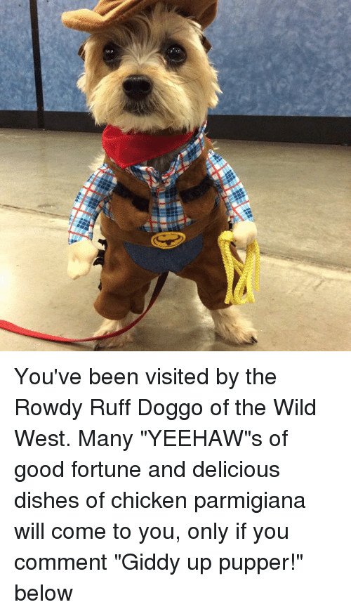 Visited By The Dog Of Good Fortune