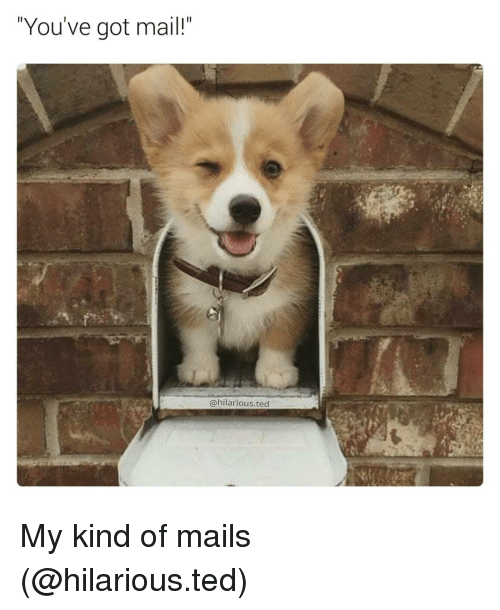 You've Got Mail: You've got mail!  (a hilarious ted My kind of mails (@hilarious.ted)