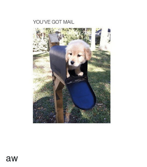 You've Got Mail: YOU'VE GOT MAIL aw
