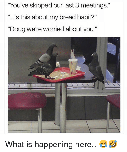 """Doug, Funny, and What Is: """"You've skipped our last 3 meetings.""""  """"..  is this about my bread habit?'""""  """"Doug we're worried about you.""""  G: Ship What is happening here.. 😂🤣"""