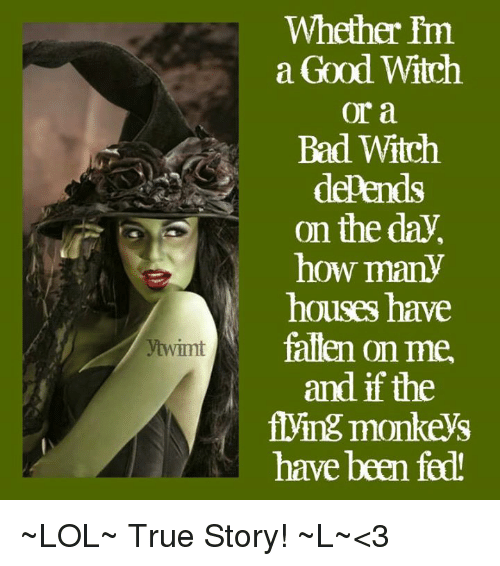 flying monkeys: ytwimt  Whether I'm  a Good Witch  or a  Bad Witch  depend  on the day  how many  houses have  fallen on me.  and if the  flying monkeys  have been fed ~LOL~ True Story! ~L~<3