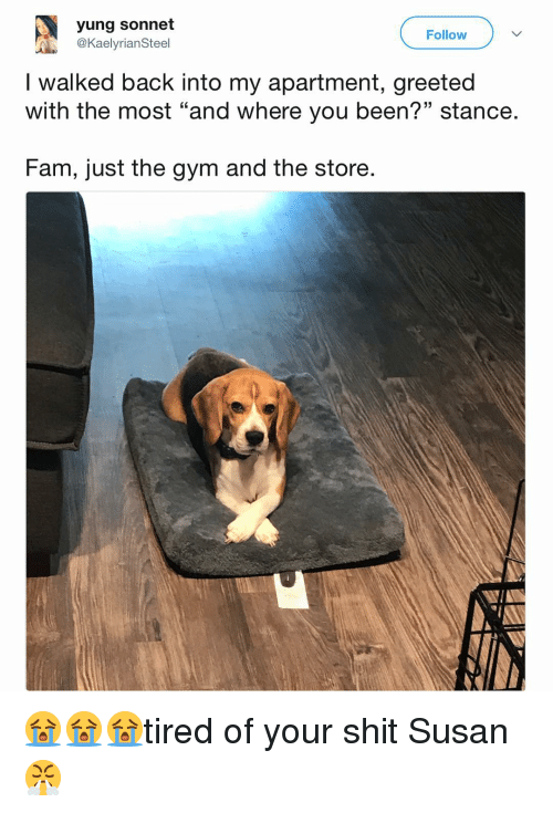 "Fam, Funny, and Gym: yung sonnet  @KaelyrianSteel  Follow  I walked back into my apartment, greeted  with the most ""and where you been?"" stance.  13  Fam, just the gym and the store. 😭😭😭tired of your shit Susan😤"