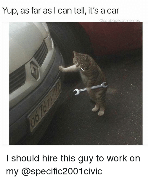 Work, Dank Memes, and Car: Yup, as far as l can tell, it's a car  agecatmeme I should hire this guy to work on my @specific2001civic