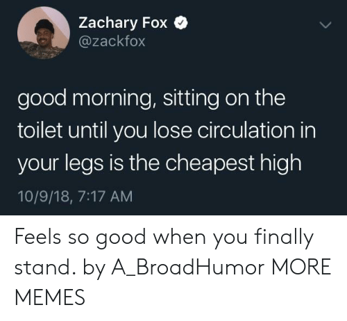 Circulation: Zachary Fox Q  @zackfox  good morning, sitting on the  toilet until you lose circulation in  your legs is the cheapest high  10/9/18, 7:17 AM Feels so good when you finally stand. by A_BroadHumor MORE MEMES