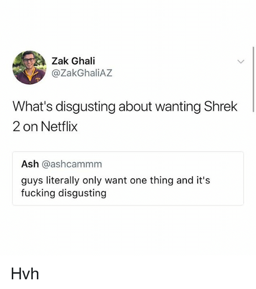 Ash, Fucking, and Memes: Zak Ghali  @ZakGhaliAZ  What's disgusting about wanting Shrek  2 on Netflix  Ash @ashcammm  guys literally only want one thing and it's  fucking disgusting Hvh