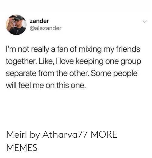 Mixing: zander  @alezander  I'm not really a fan of mixing my friends  together. Like, I love keeping one group  separate from the other. Some people  will feel me on this one. Meirl by Atharva77 MORE MEMES