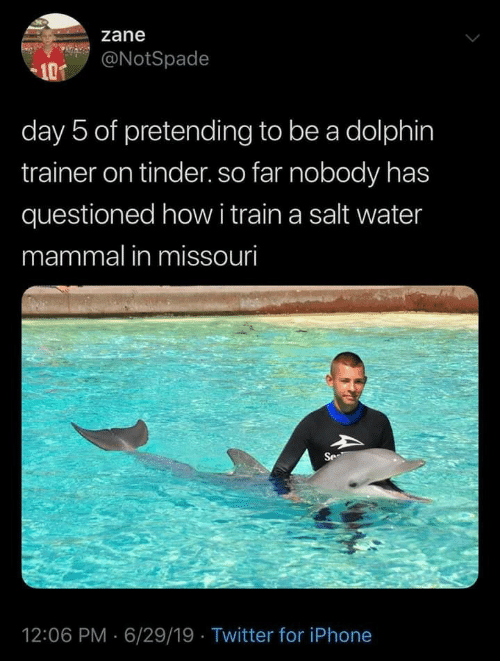 Missouri: zane  @NotSpade  101  day 5 of pretending to be a dolphin  trainer on tinder. so far nobody has  questioned howi train a salt water  mammal in missouri  Se  12:06 PM 6/29/19 Twitter for iPhone