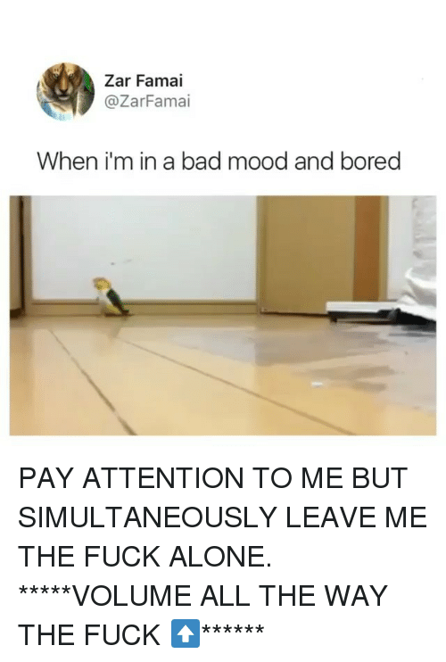 Being Alone, Bad, and Bored: Zar Famai  @ZarFamai  When i'm in a bad mood and bored PAY ATTENTION TO ME BUT SIMULTANEOUSLY LEAVE ME THE FUCK ALONE. *****VOLUME ALL THE WAY THE FUCK ⬆️******