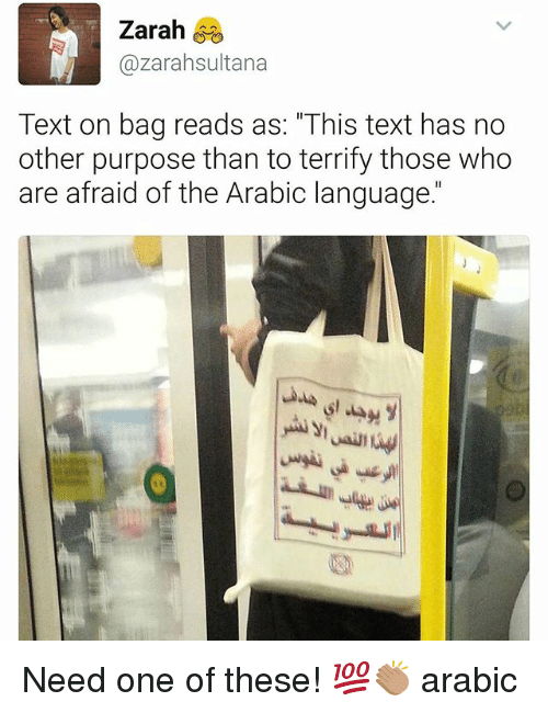 """Memes, Text, and Arabic (Language): Zarah  Cazarahsultana  Text on bag reads as: """"This text has no  other purpose than to terrify those who  are afraid of the Arabic language."""" Need one of these! 💯👏🏽 arabic"""