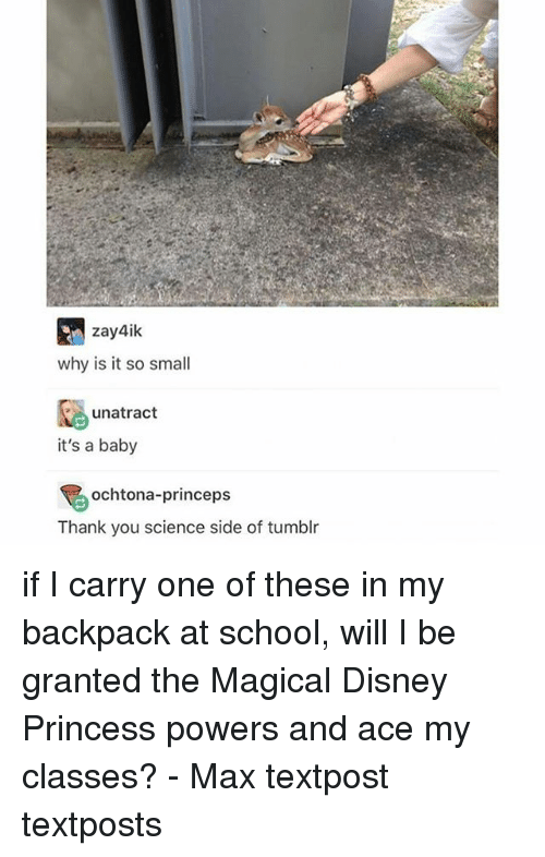 Disney, Memes, and School: zay4ik  why is it so small  unatract  it's a baby  ochtona-princeps  Thank you science side of tumblr if I carry one of these in my backpack at school, will I be granted the Magical Disney Princess powers and ace my classes? - Max textpost textposts