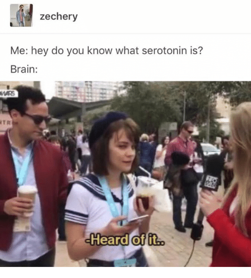 Brain, Mars, and Humans of Tumblr: zechery  Me: hey do you know what serotonin is?  Brain:  MARS  TR  Heard of it.