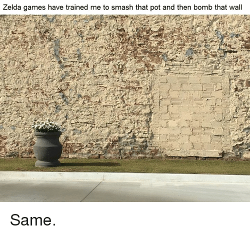 zelda game: Zelda games have trained me to smash that pot and then bomb that wall Same.