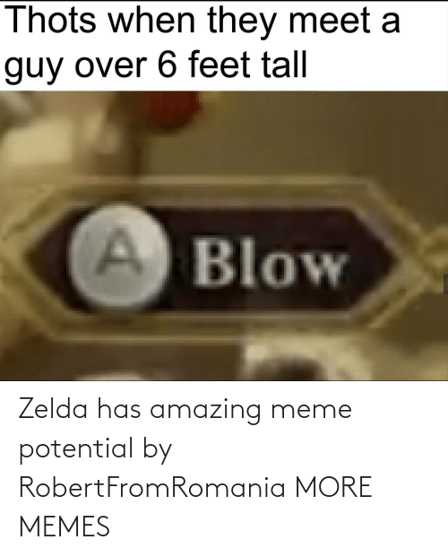 Zelda: Zelda has amazing meme potential by RobertFromRomania MORE MEMES