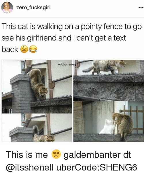 Memes, Zero, and Text Back: zero fucksgirl  This cat is walking on a pointy fence to go  see his girlfriend and l can't get a text  back  zero fucksgirl This is me 😒 galdembanter dt @itsshenell uberCode:SHENG6