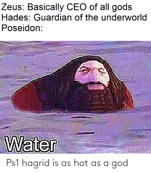 hagrid: Zeus: Basically CEO of all gods  Hades: Guardian of the underworld  Poseidon:  m-Seq  Water Ps1 hagrid is as hot as a god