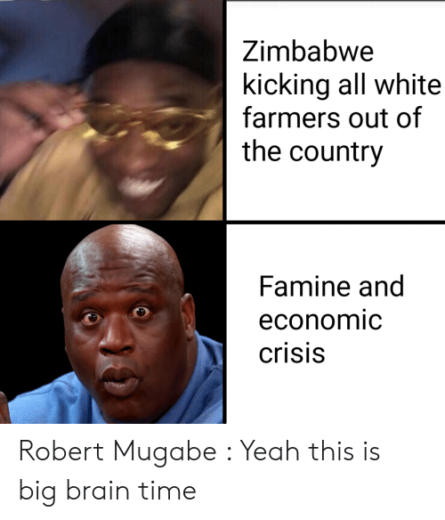 robert mugabe: Zimbabwe  kicking all white  farmers out of  the country  Famine and  economic  crisis Robert Mugabe : Yeah this is big brain time