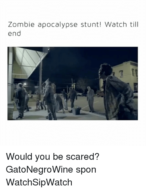 Watch, Zombie, and Apocalypse: Zombie apocalypse stunt! Watch till  end Would you be scared? GatoNegroWine spon WatchSipWatch