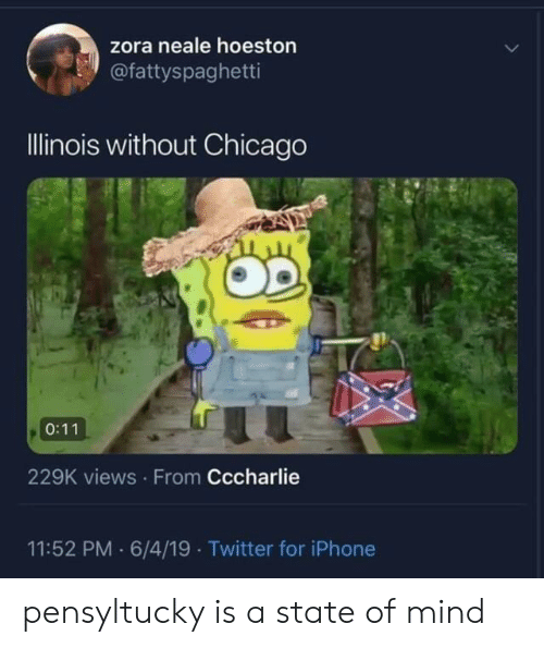 Illinois: zora neale hoeston  @fattyspaghetti  Illinois without Chicago  0:11  229K views From Cccharlie  11:52 PM 6/4/19 Twitter for iPhone pensyltucky is a state of mind