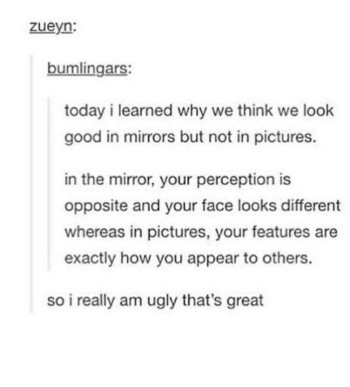 Ugly, Good, and Mirror: zueyn:  bumlingars:  today i learned why we think we look  good in mirrors but not in pictures.  in the mirror, your perception is  opposite and your face looks different  whereas in pictures, your features are  exactly how you appear to others.  so i really am ugly that's great