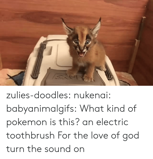 Toothbrush: zulies-doodles:   nukenai:  babyanimalgifs: What kind of pokemon is this? an electric toothbrush  For the love of god turn the sound on